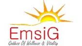 امسیگ Emsig